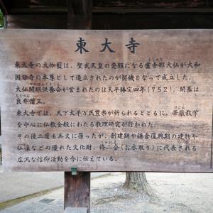 東大寺で大仏【2020年秋の奈良旅行】