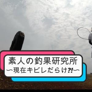 大阪へち釣り 2020年5月30日(土)北港レーダーにて