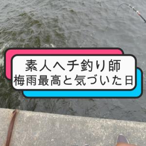 関西 ヘチ釣り 2020/6/27(SAT)祝⁈梅雨到来!北港ヤイタから~