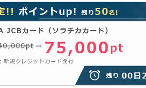 【ANAカード発行】ならポイントサイト経由がおすすめ!7500円人数限定のお小遣い稼ぎ