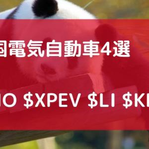 【米国株】 中国の電気自動車銘柄オススメ4選