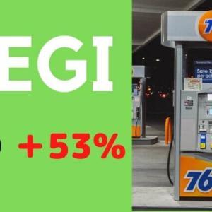 リニューアブル・エナジー 【REGI】 株価好調!注目の再生エネルギー企業とは?