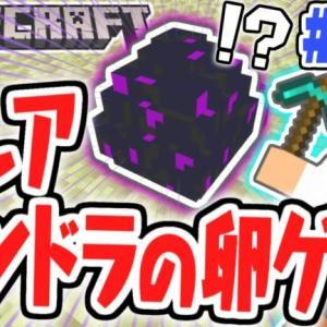 超幻ドラゴンの卵をゲット!!何に使えるの!?マイクラ実況Part101【マインクラフト】