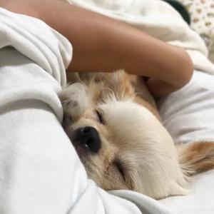 腕枕とマツエク