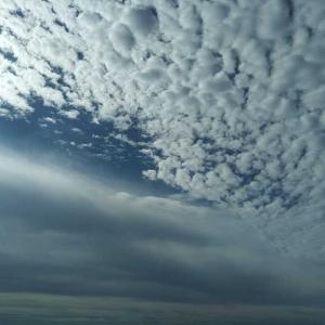 久しぶりの曇り