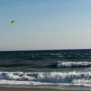 風の強い日はカイトサーフィン