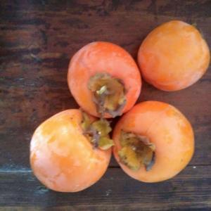 干し柿に初挑戦