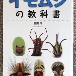 イモムシの教科書【レビュー】儚くも愛しい幼虫たち