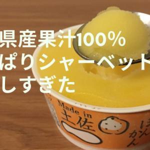 生産者のこだわりがつまった高知県産果汁100%の柑橘シャーベットが美味しすぎたのでレポ。お中元やお歳暮・プレゼントに間違いない!