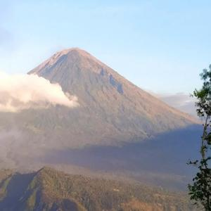 バリ島新スポット・天空からアグン山、ラハンガン・スイート(Lahangan Sweet)