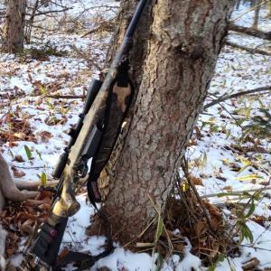 (超初心者向け)鹿が獲れない原因と狩猟歴5年の僕が鹿を取れるようになるまでやった失敗5選