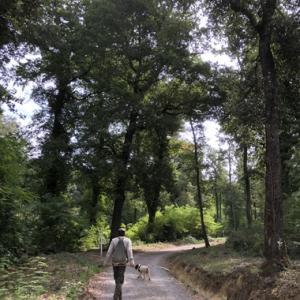 Lucca日記 ~トリュフ狩りとヴィンチ村~
