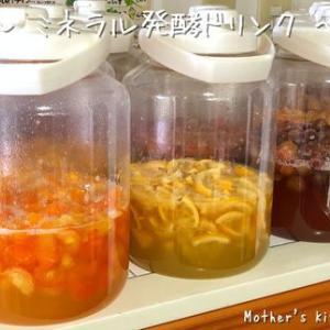 【ご案内】ミネラル発酵ドリンク講座