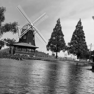 PotteringPhoto - Windmill