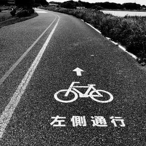 自転車みゅ~じっく1