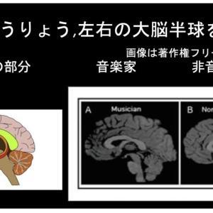 ピアノは脳に良い影響を与える①