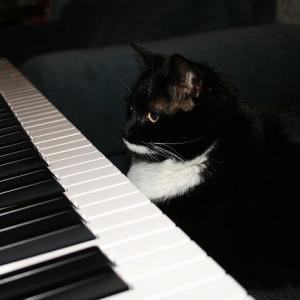 朝ピアノ!