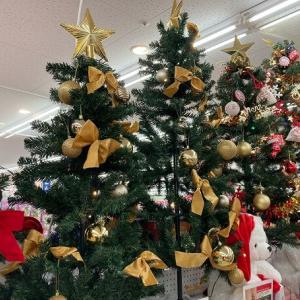 6歳のクリスマス!サンタクロースからは最後のプレゼント?
