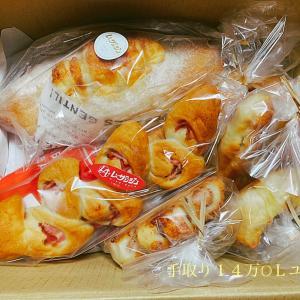 ふるさと納税の返礼品〜ハード系パン〜