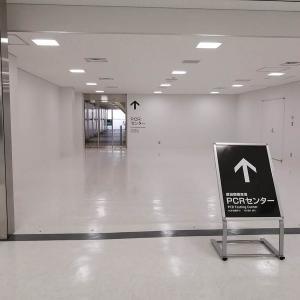 シンガポールで14日間のホテル隔離体験~成田空港でPCR検査