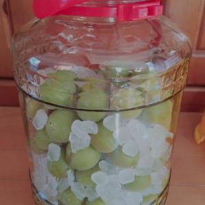 梅シロップ今年は大粒!どどーんと一瓶に梅2キロ