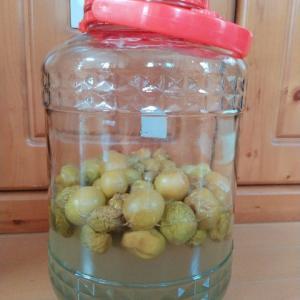 梅シロップ3リットルできました!瓶を入れ替えて保存