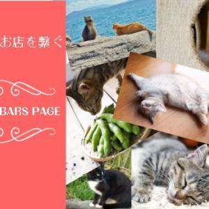 インスタグラムのアカウントをねこメイト・社長猫部の自由投稿制のに変更しました