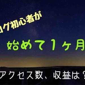 [ゲームブログ] 初心者が始めて1か月で約1万PV達成!!