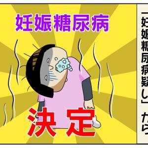 生まれる前から波乱万丈【ほぺろう 胎児編】4