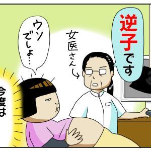 生まれる前から波乱万丈【ほぺろう 胎児編】7
