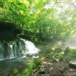 いつか行きたい日本の名所 元滝伏流水 奈曽の白滝 金峰神社