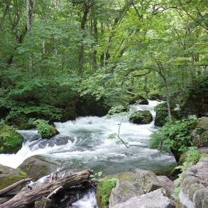 いつか行きたい日本の名所 奥入瀬渓流