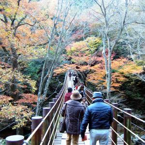 いつか行きたい日本の名所 花貫渓谷