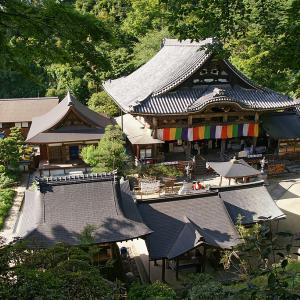 いつか行きたい日本の名所 東光山龍蓋寺 (岡寺)