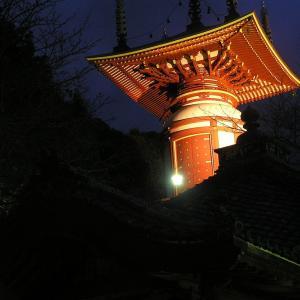 いつか行きたい日本の名所 薬王寺