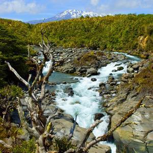 行った気になる世界遺産 トンガリロ国立公園