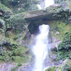 行った気になる世界遺産 リオ・アビセオ国立公園