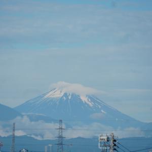 富士山みえました!・東京ステップ3へ