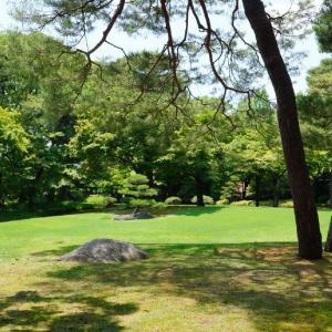 グリーンがまぶしい殿ケ谷戸庭園