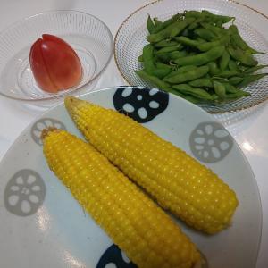 トウモロコシ最後の収穫!