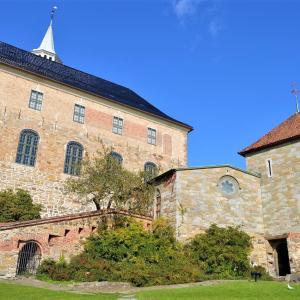 北欧周遊旅行5日目(後編)!ノルウェーのオスロでアナ雪と美食に出会う