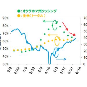 【原油39ドル超え】まだまだ上がる?OPECプラス減産へ【米原油データ】