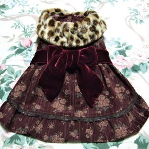 ★ 冬の思い出 15 ・ お嬢様風の洋服で、カモさん検査 ... 🐦