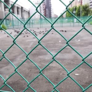 20190715金網に囲まれた広場に公園