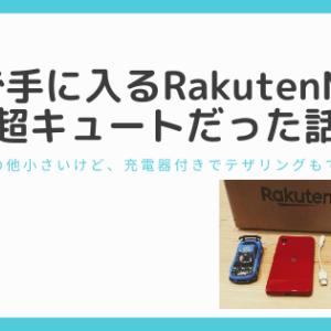 1円で手に入るRakutenMiniが超キュートだった話