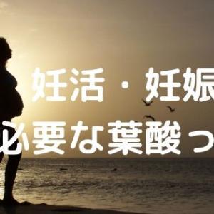 葉酸は妊活・妊娠に必要!