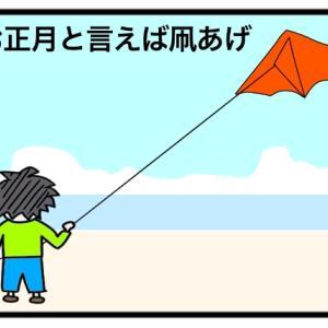 【凧あげ名人】息子氏はまるで鳥の如く凧をあげることができます!
