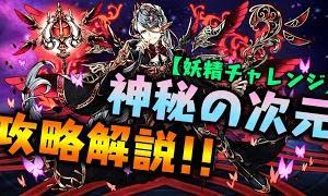 【解説】神秘の次元『妖精チャレンジ』攻略解説!!  【ダックス】【パズドラ実況】