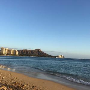 昨夜は爆睡 ハワイにはもう行かないですって!
