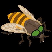 自然の中で車に寄ってくるスズメバチのような虫!それはアブ!でかいのに血を吸う吸血生物!
